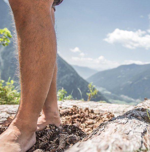 Alto Adige Balance – Le erbe primaverili: sapori sani e gustosi